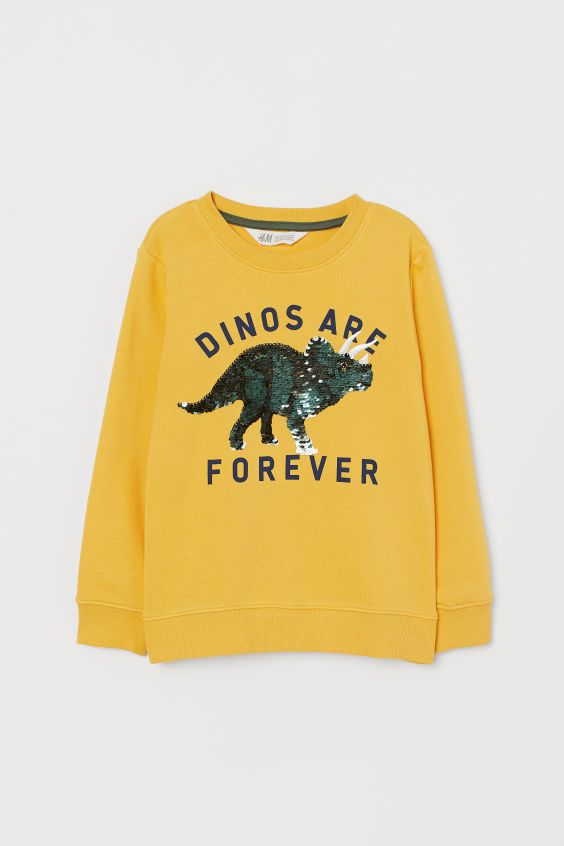 DINOS ARE FOREVER SWEATSHIRT ZNF08